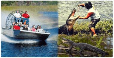 Big Easy Swamp Adventures Swamp Adventures In New